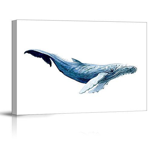 Large Humpback Whale on a White Background