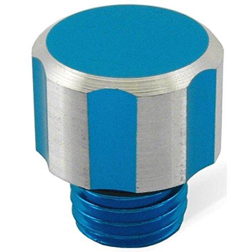 TAPPO OLIO INGRANAGGI AM6 ARGENTO BLU RACING OIL GEAR TAP SCREW HUILE BOUCHON ONE