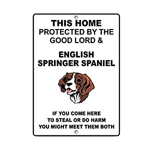 Aluminum Metal Sign Funny English Springer Spaniel Dog Home Protected by Good Lord and Informative Novelty Wall Art Vertical 8INx12IN 28