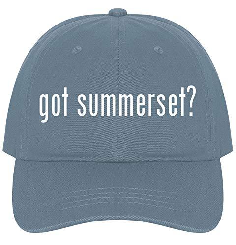 The Town Butler got Summerset? - A Nice Comfortable Adjustable Dad Hat Cap, Light Blue
