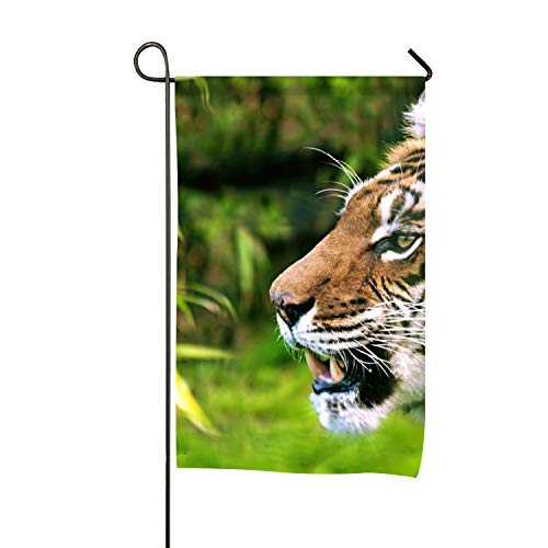 (Lucy Curme Tiger Garden Flag Yard Decoration; 12