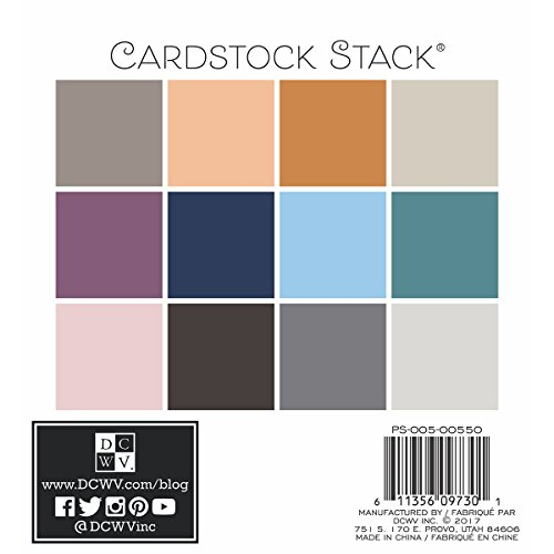 DCWV PS-005-00550 6X6 Card Stock Neutrals Printed Textured Stack (Scrapbook Textured Cardstock)