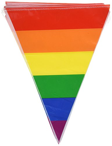 Rainbow Pennant Banner Party Accessory (1 count) (Rainbow Bunting)
