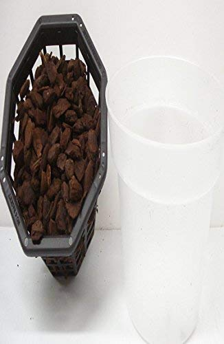 Orchid – 6 1 2 inch Clear Plastic Pot 6 inch Basket filled with New Zealand Bark
