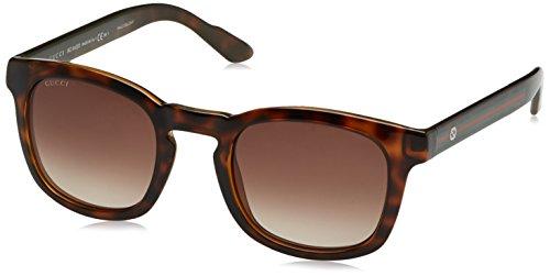 Gucci GG 1113/S DWJJ6 (Havana with Grey Gradient lenses) (Gucci Brille Frames Für Frauen)