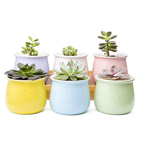 Mkono 3.5-Inch Ceramic Succulent Plant Pots Small Cactus Planter Modern Flower Pots, Set of 6 in Different Color
