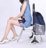 Trolley Foldable Portable Shopping with Chair