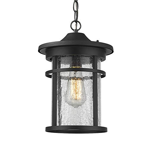 Emliviar Outdoor Hanging Lantern Light Fixture, 1-Light Exterior Pendant Porch Light in Black Finish with Crackle Glass, A208511D1