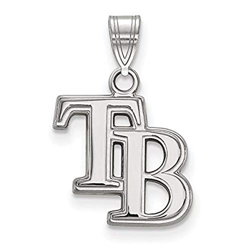 (Roy Rose Jewelry 14K White Gold MLB LogoArt Tampa Bay Rays Small Pendant)