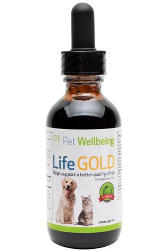 Pet Wellbeing – Life Gold – Cat Health Support – a Natural, Herbal Supplement that Helps Maintain the Health of your Cat – 2 oz Liquid Bottle, My Pet Supplies