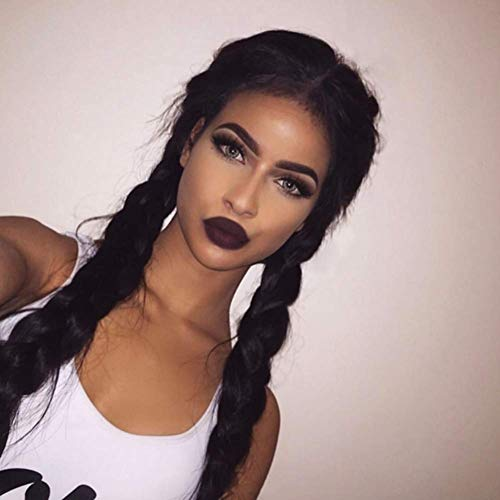 Black Double Braids Synthetic Lace Front Wig with Baby Hairs 2 Braid Wigs Long Middle Parting 2 braided with Natural Braided Synthetic Wig Braiding Heat Resistant Fiber Hair for Woman ()