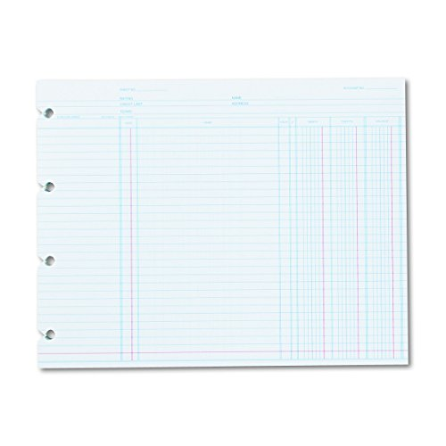 (Wilson Jones N2D Accounting, 9-1/4 x 11-7/8 (Pack of 100 Loose Shoots))