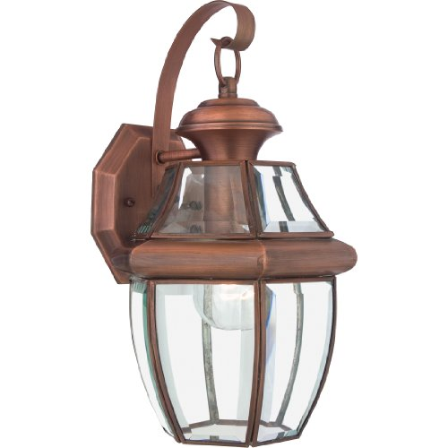 Copper Aged Light 1 (Quoizel NY8316AC Newbury 1-Light Outdoor Lantern, Aged Copper)