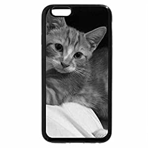 iPhone 6S Case, iPhone 6 Case (Black & White) - Pickle the kitten