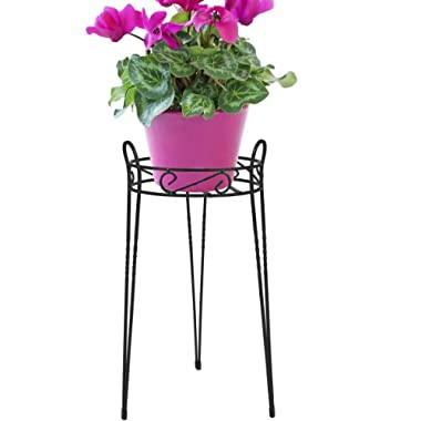 CobraCo Canterbury 21-Inch Black Scroll Top Plant Stand  SCBPS1021-B