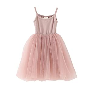 LYXIOF Baby Girls Tutu Dresses Sleeveless Princess Dress Tulle Skirts Mini Dress For Toddler Girls Pink A 2 Years