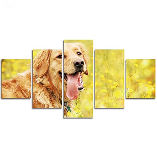 qingyuge 5 Panels Canvas Wall Art Home Decor Canvas Painting 5 Pieces Cute Golden Retriever Modular Poster Hd Prints Animal Dog Picture Living Room Wall Art