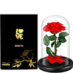 MNIEYU-Preserved-Real-Rose-Eternal-Rose-in-Luxury-Glass-Dome-Best-Gift-for-HerEnchanted-Rose-with-Exquisite-Wooden-Base-Best-Gift-Valentines-Day-AnniversaryMothers-Day-and-Birthday-Gifts