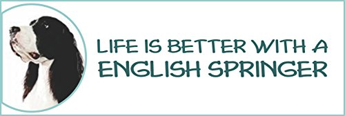 Holmes Stamp & Sign Life is Better with a English Springer Spaniels Bumper Sticker,2