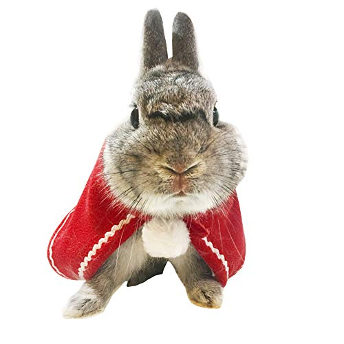 Winter Warm Bunny Rabbit Kitten Cat Small Animal Cloak Costume for Christmas Dress-Up Party Holiday Decor Photo Props,Cute Red Santa Cat Headwear Collar Festival Outfits Apparel Clothes Accesories