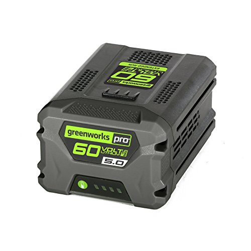 Greenworks Pro 60-Volt Max-Volt 5-Amp Hours Rechargeable Lithium Ion (Li-ion) Cordless Power Equipment Battery by Greenworks