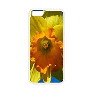 Daffodil Flower IPhone 6 Plus Cases, Protective Case for Iphone 6 Plus Men Cool Okaycosama - White