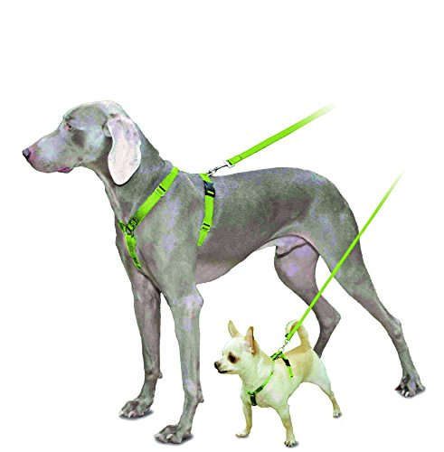 PetSafe Sure-Fit Harness, Adjustable Dog Harness from the Makers of the Easy Walk Harness by PetSafe