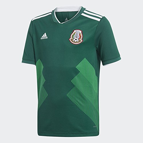 Mexico National Team 2018 World Cup Jersey Replica