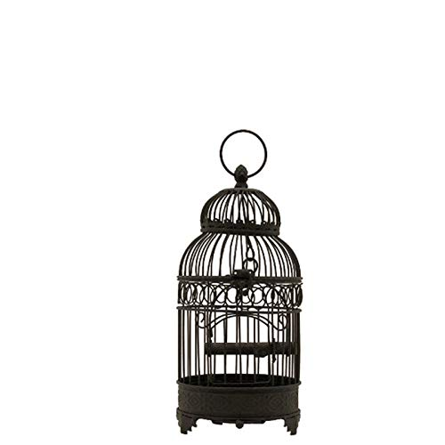 chemin_de_campañ - Jaula para pájaros (Hierro Redondo, 40 cm x 16 ...