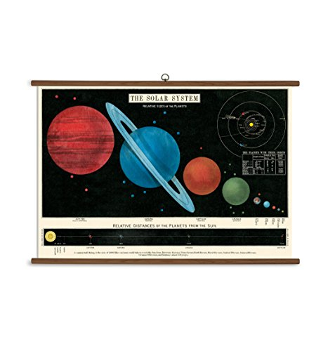 Cavallini Papers Solar System Vintage School Chart by Cavallini Papers & Co.