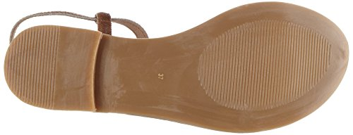 Brown Fermeture gold Braun Dark Inuovo Femme 7306 en T qxpp8405