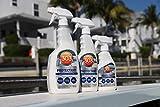 303 Marine UV Protectant Spray for