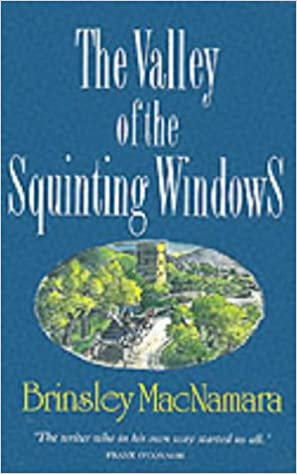 Image result for Brinsley MacNamara, The Valley of the Squinting Windows,