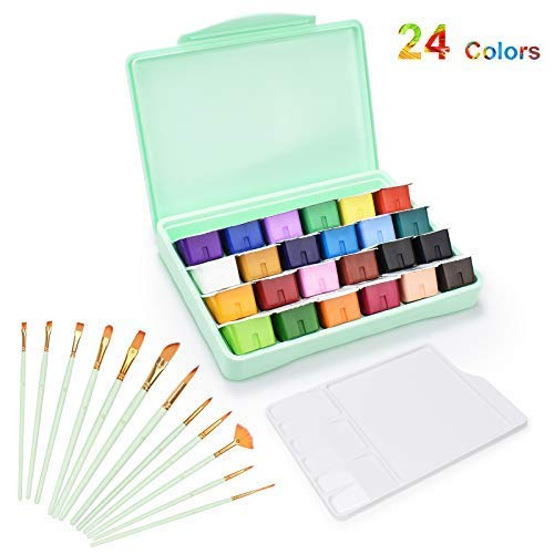 HIMI Gouache Paint Set, 24 Colors x 30ml Unique Jelly Cup Design, Portable Case with Palette, Non Toxic Paints for Artist, Hobby Painters & Kids, Ideal for Canvas Painting for Novelty Gift (Green)