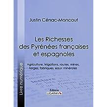 Les Richesses des Pyrénées françaises et espagnoles: Ce qu'elles furent, ce qu'elles sont, ce qu'elles peuvent être - Agriculture, irrigations, routes, ... fabriques, eaux minérales (French Edition)