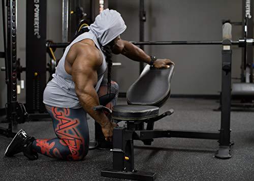 10 Best Powertec Weight Benches
