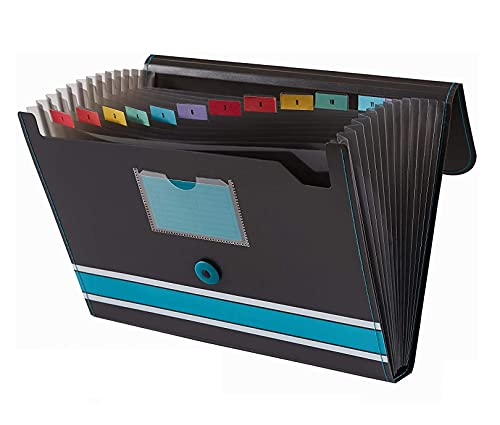 Afflatus File Folder for Documents and Certificate Organizer Large Size A4 Letter Paper Holder School Office Home Collage Accordion Certificate Organizer 13 Pockets Multicolor