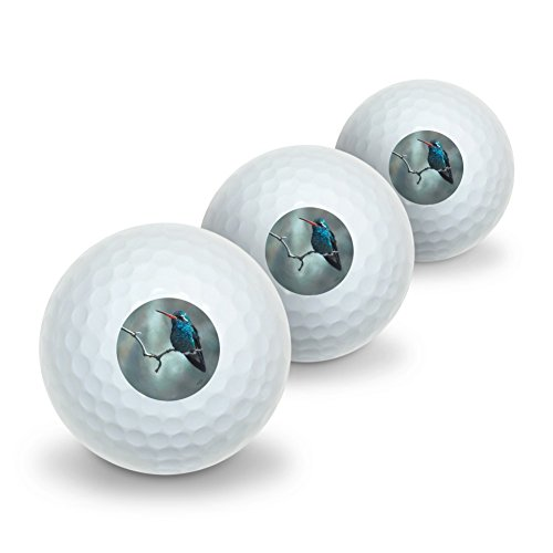 Golf Hummingbird (Graphics and More Broad-Billed Hummingbird Resting on Branch Novelty Golf Balls 3 Pack)
