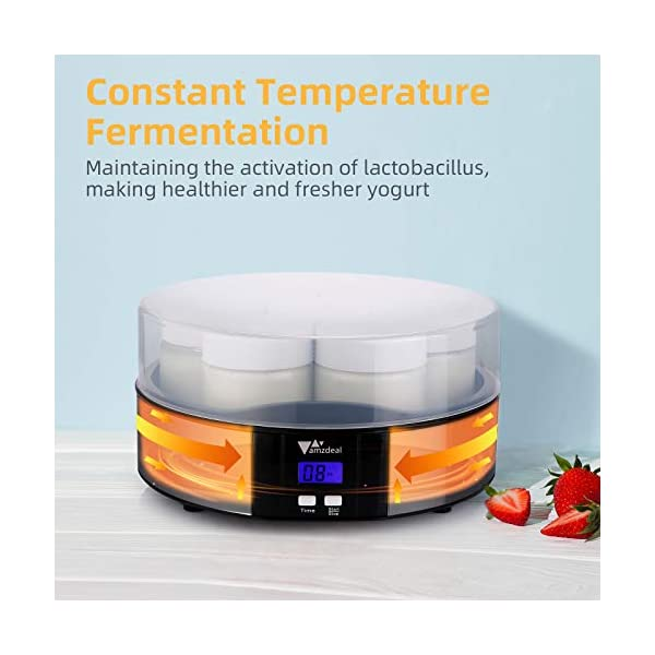 Amzdeal Yogurtiera- Yogurtiera Elettrica con Display LCD e 7 Barattoli di Vetro da 200 ml, Timer di Spegnimento… 3