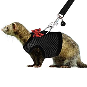 RYPET Small Animal Harness and Leash – Soft Mesh Small Pet Harness with Safe Bell, No Pull Comfort Padded Vest for Small Pet