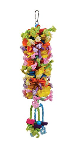 41Y2BV8rxyL - Prevue Pet Products 62606 Calypso Creations Club Bird Toy