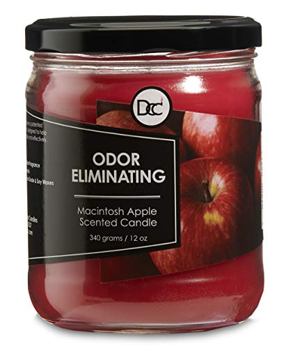 Dianne's Custom Candles Scented Odor Eliminating Fragranced Candle 12 Ounce (Macintosh Apple) -