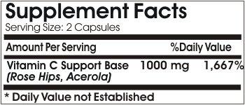 Vitamin C 1000mg ~ 100 Capsules - No Additives ~ Naturetition Supplements