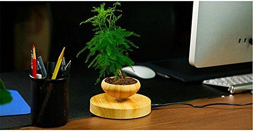 Zomtop Levitation Magnetique Air Suspension Bonsai Pot De Fleurs En