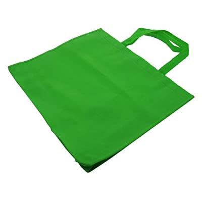 HomeFlav Generic Grocery Bag Shopping Bag Eco Bag Reusable Eco friendly - 10 pcs