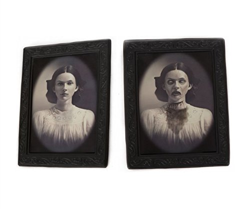 Halloween Lenticular 3D Changing Face Moving Picture Frame Horror Portrait Lady Gentleman Little Girl Monster Haunted Spooky Decorations for Halloween Theme Party Home Decor (Lady) -