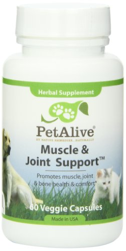PetAlive Muscle and Joint Support for Pet Arthritis, Rheumatic Conditions and Hip Dysplasia (60 Caps)