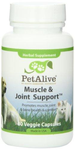 Muscle petAlive et soutien interarmées pour se peloter arthrite, maladies rhumatismales et dysplasie de la hanche (60 gél.)