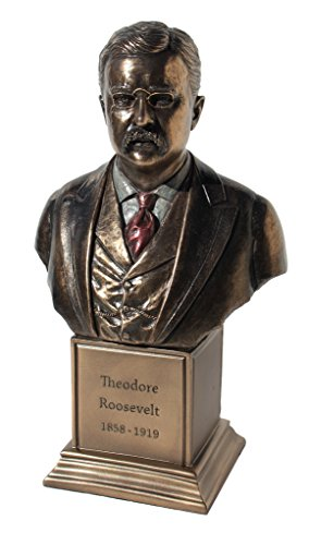 (Theodore Roosevelt Bust, Cold Cast Bronze, Figurine 7 1/2 Inch Tall)