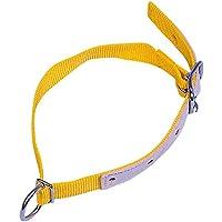 Kerbl Halsriemen für Schafe und Ziegen, gelb, 60cm, mit Leder verstärkt, verstellbares Halsband mit Schnalle und D-Ring